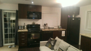 Beautiful Bachelor Basement for single tenant