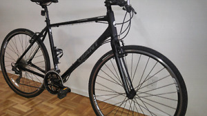Giant Hybrid Bycicle