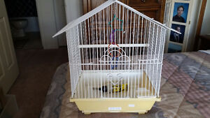 Bird Cage and Acc.