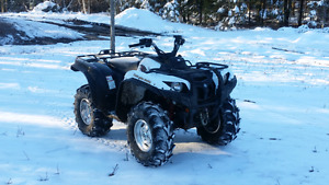 2010 grizzly 700