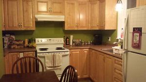 Room DOWNTOWN. Beautiful Renovated home. St. John's Newfoundland image 4