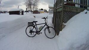 Vélo électrique Bionx 36 Volts