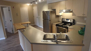 2 Bedroom Canmore Condo Penthouse – includes AC & Utils*