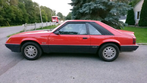 mint condition 1985 mustang. $10,000 firm