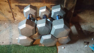 Assorted Dumbbells / Weights
