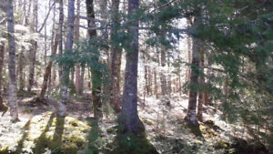 Land for Sale in Labelle NS