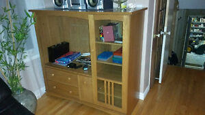 Storage and TV cabinet