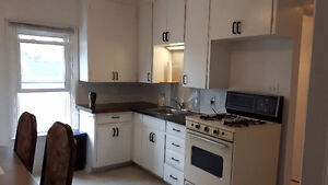 Two bedroom apartment in central triplex with laundry Sarnia Sarnia Area image 5