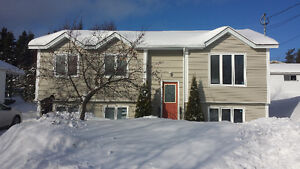 FOR RENT 3+ Bedroom House in Clarenville Area Fully Furnished