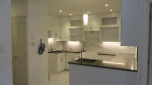 SUNNY & BRIGHT *** 7 ½  *** OUTREMONT ***  NEW HOUSE  ***