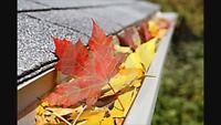 **** Fall Clean-ups/Eavestroughs/Snow Removal ****