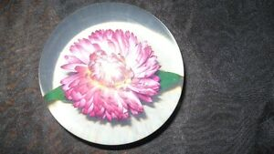 "VINTAGE NATURE'S PAPERWEIGHT MID CENTURY BY ""TARAX"" Kitchener / Waterloo Kitchener Area image 4"