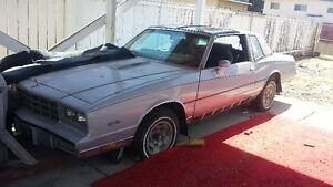 81 Monte Carlo Turbo project package