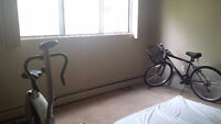 Roommate -male for one room for $400 -Downtown