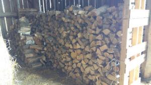 1.8 Dry Bush Cord of Split Fire Wood