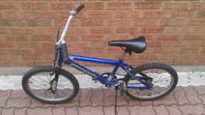 FOR SALE: 20 inch wheel Supercycle bicycle (bike)