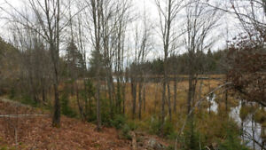125 acres. Perfect for a hunting camp. Not far out of the city !
