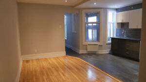Heart of Plateau, Saint-Dominique,Fully renovated, Available NOW