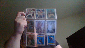 MLB baseball cards