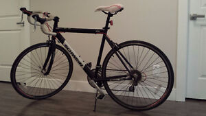 "Schwinn 24 speed 22"" frame road bike OBO"