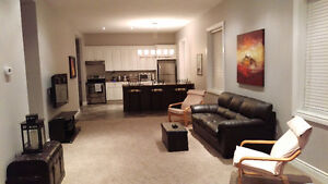 Newly renovated room for rent/ shared accommodation
