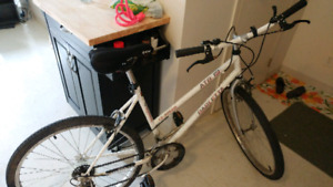 Womens 12 speed bicycle
