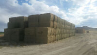 HAY FOR SALE. SICK OF OUTRAGEOUS PRICES?