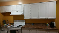 new two bedroom +den basement ready for rent