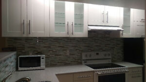 NEWLY RENOVATED BASEMENT APARTMENT FOR RENT IN RICHMOND HILL