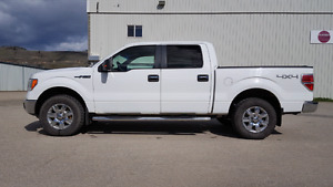 2009 Ford F-150 XLT (Chrome Package)