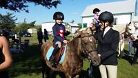 Horseback Riding lessons with Equine Canada Certified Coach