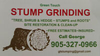 STUMP REMOVAL  - THOROLD and SURROUNDING AREAS