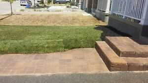 SOD special $1.50/SQFT FLAT RATE & FREE SPRINKLER London Ontario image 9