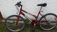 Womens Supercycle 18 Speed Mountain Bike ( 26 Tire Size )