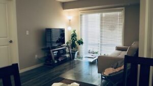 3 Bedrooms Apt for Rent in Harbour Landing,Available Now