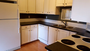 Pet friendly Condo Downtown Oliver