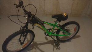 Black and Green Kid's Mountain Bike, Near Perfect Condition