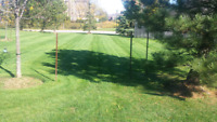 Lawn services residentials 30-35$