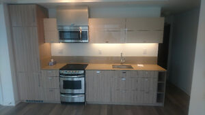 BRAND NEW 2BDR + 2BATH  FOR RENT 290 Adelaide St W