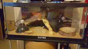 Brand New Reptile Tank and Accessories
