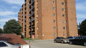 Spacious Apartment to share with just one other Kitchener / Waterloo Kitchener Area image 1