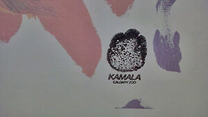 Limited edition art by elephant Kamala at the Calgary Zoo. Revelstoke British Columbia image 8