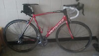 2010 Specialized Tarmac Expert SL Carbon
