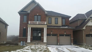 Brand New House for rent Between Hamilton And Caledonia