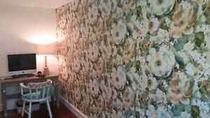For all your decorating jobs!!! Strathcona County Edmonton Area image 4