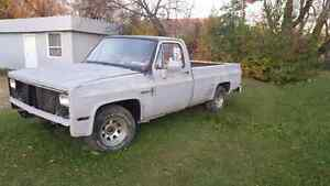 1981 Chevy (Project Truck)