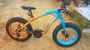 Fat wheel bike