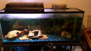 35 Gallon fish aquarium