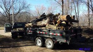 Dumpster/trailer rentals