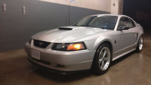 1999 Ford Mustang GT Coupe (2 door)